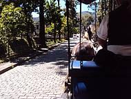 Passeio de charrete pelo centro histórico de Petrópolis