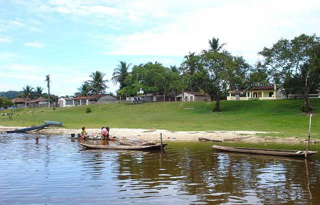 Vista do barco para a margem da lagoa.