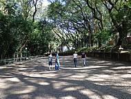 Um Belo Parque...