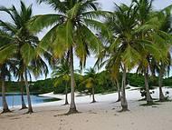 Coqueiros, dunas, lagoa compõem perfeitamente a Lagoa do Abaeté!