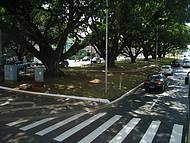 Bela Avenida Afonso Pena