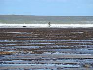 Pescador na maré baixa