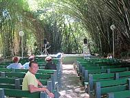 Catedral de bambu