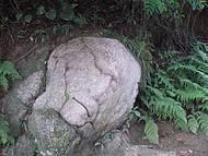 Pedra em Formato de Rosto,muito Interessante.