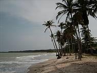 Panorâmica da Praia dos Coqueiros, em Trancoso
