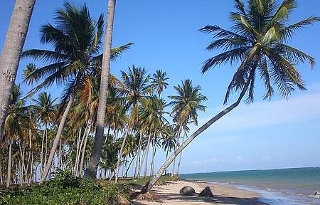 Esta praia está entre as mais lindas do Brasil.