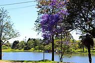 A beleza das cores da natureza em Guarapuava PR