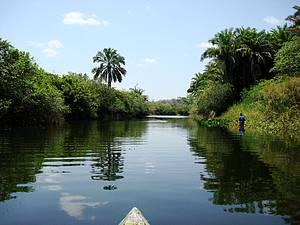 Pantanal de Marimbus
