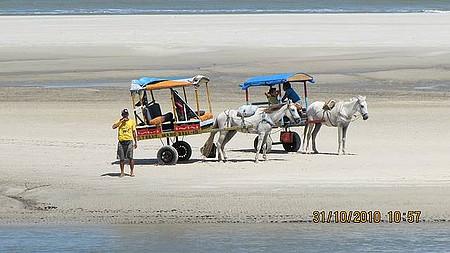 Praia do Farol - Charretes na Praia