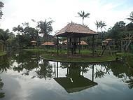 Cigs - Ilha dos Macacos