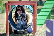 Cães e donos se divertem no Dog Park