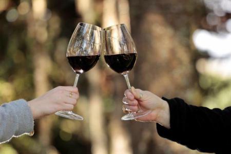 Serra Catarinense: Vinhos bem-vindos em todas as estações! - Tintos se destacam na Vinícola Urupema