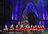 Cores, luzes e alegria no m�s de dezembro