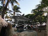 Tanque de tubarões