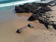 Verde no Mar das Pedras da Barra