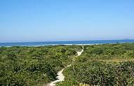 Para chegar à praia, é preciso encarar a trilha