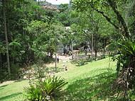 O encanto do parque