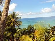 Vista da Trilha Rumo a Praia...