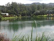 Lago no parque