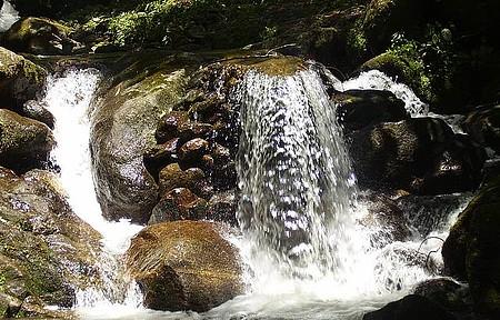 Cachoeira do Santuário-ducha dos Namorados