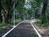 Muito Verde no Parque Florestal