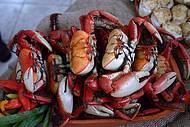 Prato t�pico, caranguejo exige habilidade na hora de comer