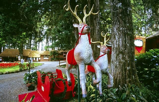 A magia do Natal marca presença o ano todo