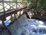 Rio morninho