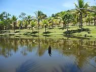 Pesque e solte: Tilápia e Tambaqui