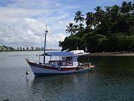 Passeio de barco no Rio do Engenho e Pesca Oceânica
