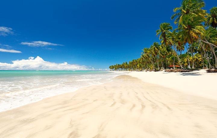 melhores praias do brasil galinhas