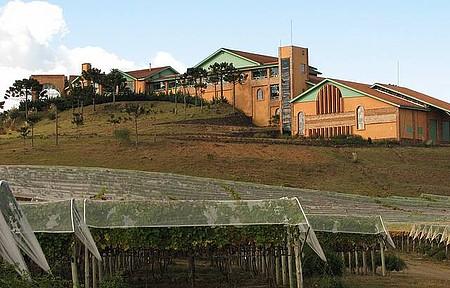 Vinícula Villa Francione - Foto da Vinícula
