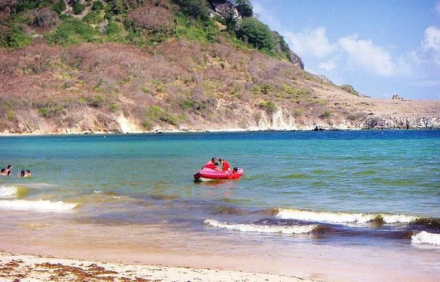 Projeto Tamar na Praia do Sueste