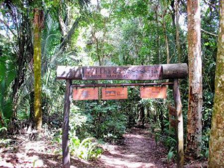 Parque Nacional de Ubajara - Trilha da Samambaia