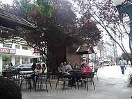 Centro da cidade, prédios históricos e artesanatos.