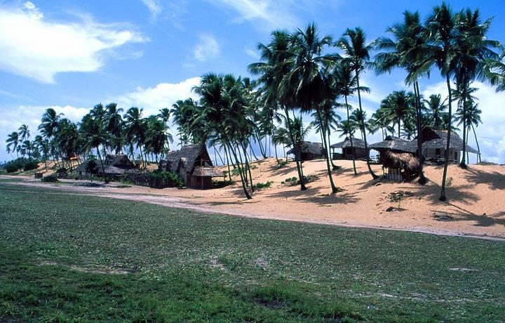 Cabanas de sapé interagem com coqueirais
