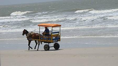 Charretes fazem o papel de taxi na ilha