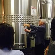 Vinho base é degustado direto do tanques de inox