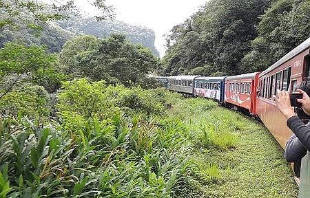 Paraná - Trem para Morretes