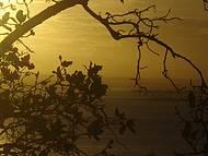 Pôr-do-Sol perfeito!