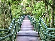 Escada que leva ao Mirante Camboriu