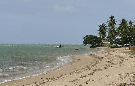 Praia formada na foz do Rio Manguaba