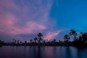 Lagoa das Araras: Um espetáculo a cada entardecer<br>