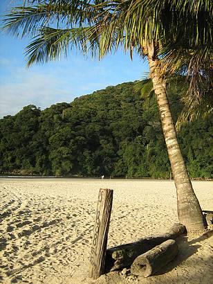 Praia calma pra todos.