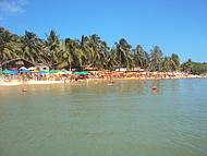 Uma das mais belas praias de Alagoas