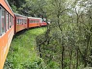 Passeio de trem Curitiba x Morretes