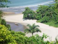 Passeio de barco leva ao rio Sahy e seus manguezais
