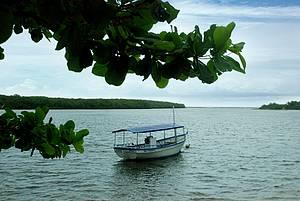 João de Tiba: Para chegar à vila é preciso cruzar o rio<br>