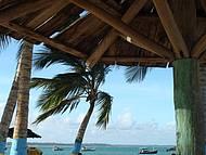 Bahia... sombra e água fresca (de côco...!!!)