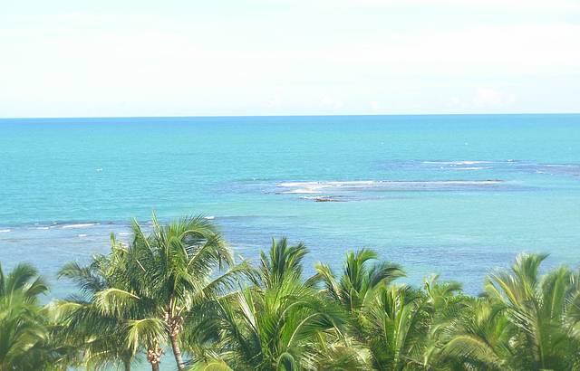 A vista do paraíso!